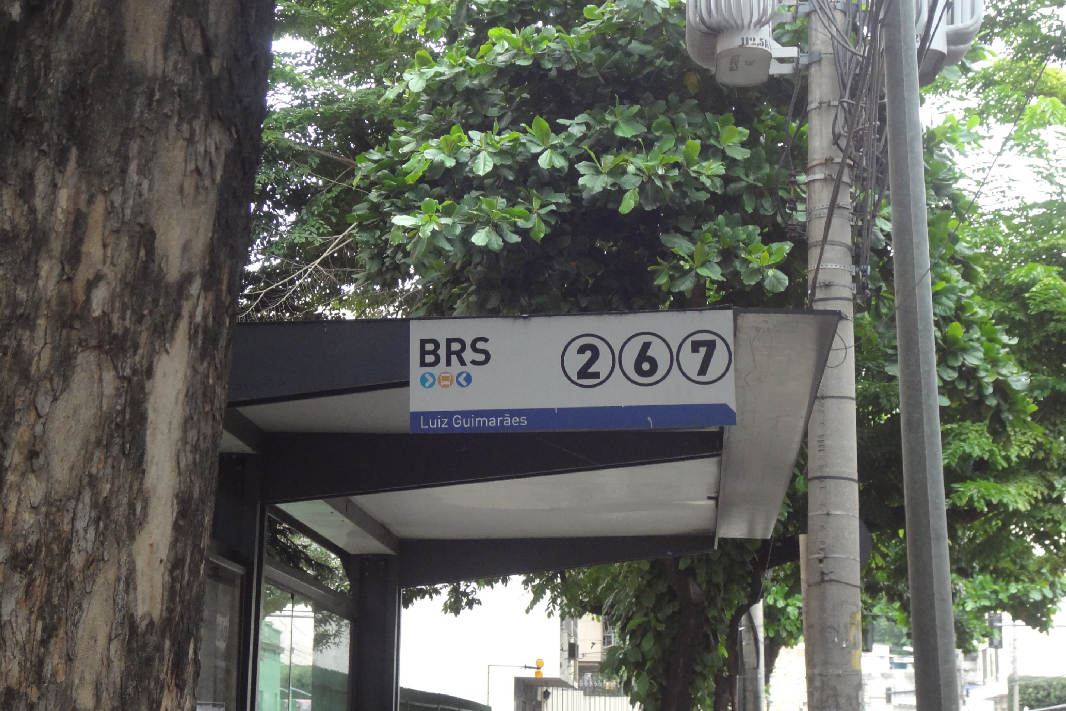 brs3-100